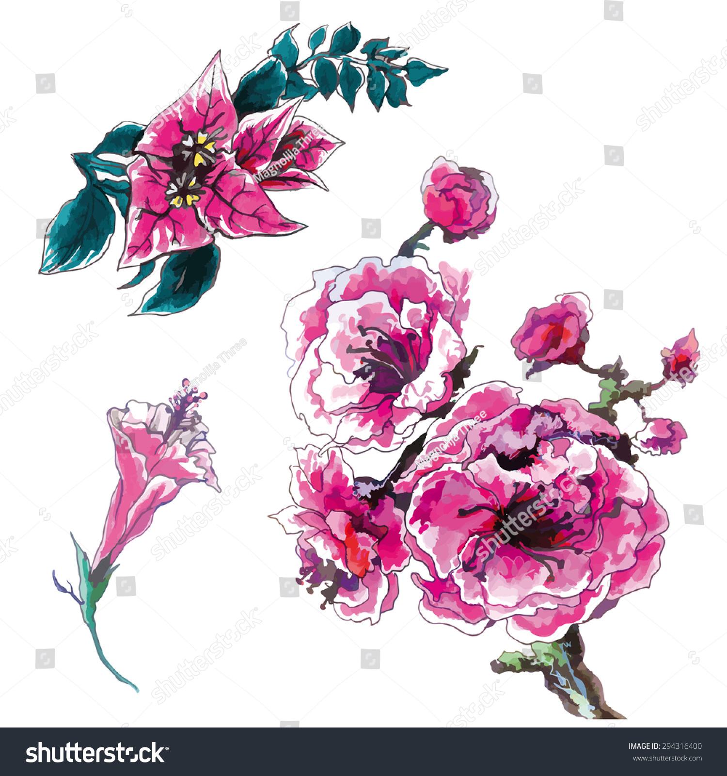 Tropical Pink Flowers Set Stock Vector Royalty Free 294316400