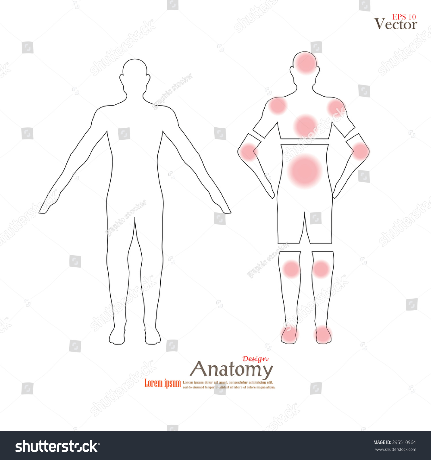 Anatomy Human Body Showing Pain Trigger Stock Vector (Royalty Free ...
