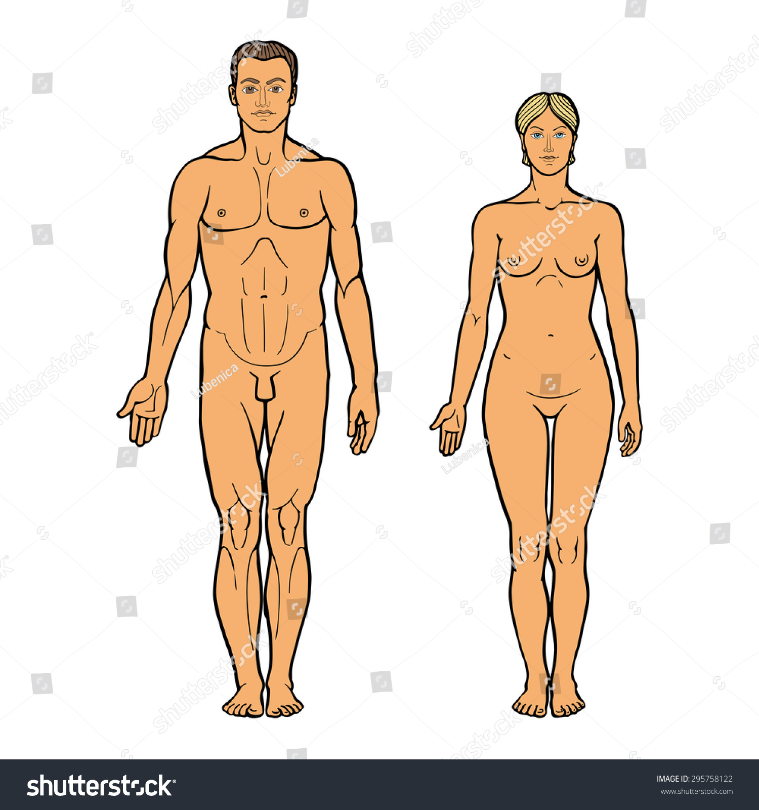 Realistic Drawing Of Naked Man And Stock Photo 295758122 -7139