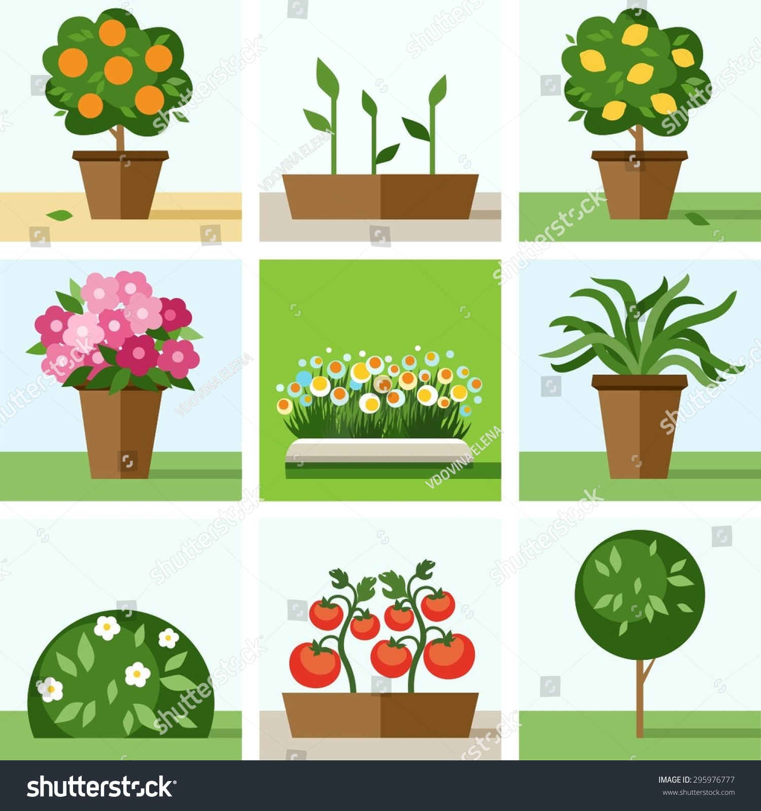 Vegetable garden graphic - Vegetable Garden Graphic