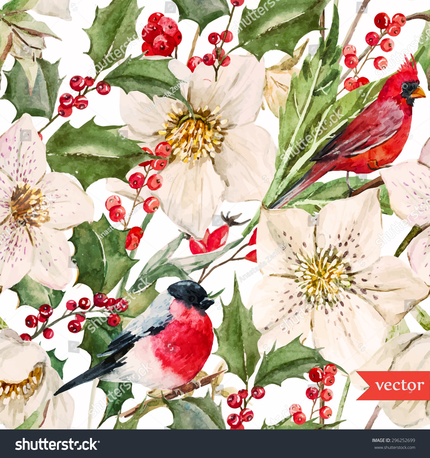 watercolor vector Christmas pattern white hellebore flowers holly bird