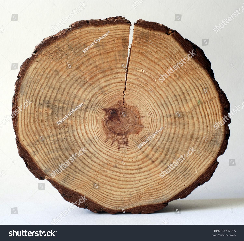 Cutting A Log : Wooden circle split cut log stock photo  shutterstock