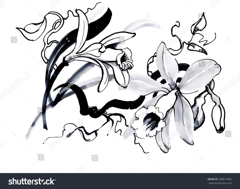 Lily flower drawing graphics ez canvas izmirmasajfo