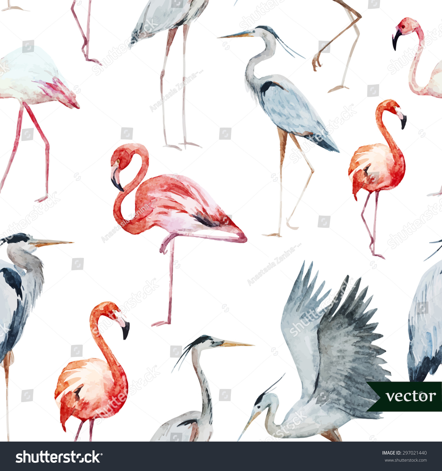 watercolor vector pattern birds flamingos storks stock vector