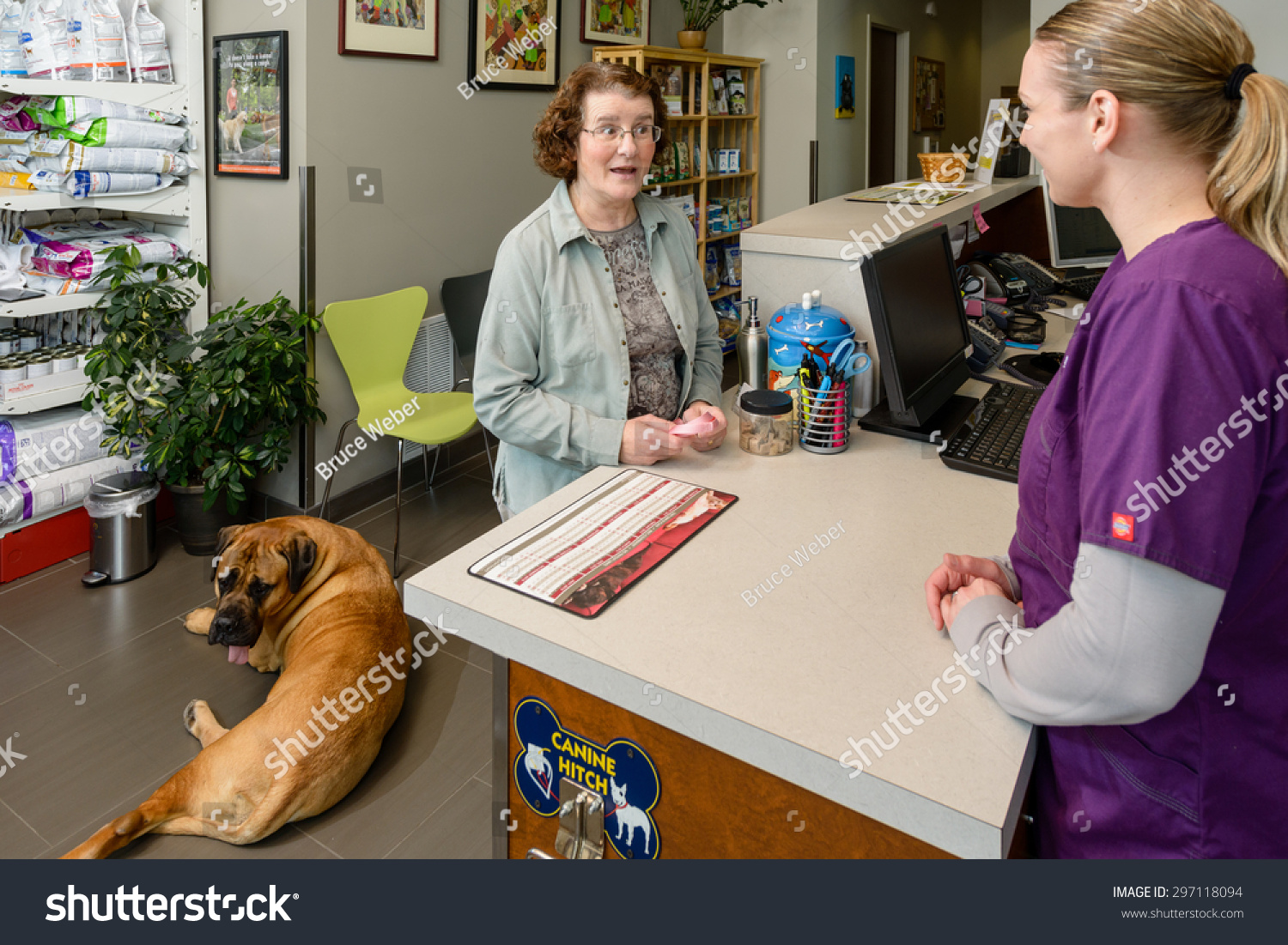 Woman Discuss Her Dog Vet Assistant Stock Photo Edit Now 297118094