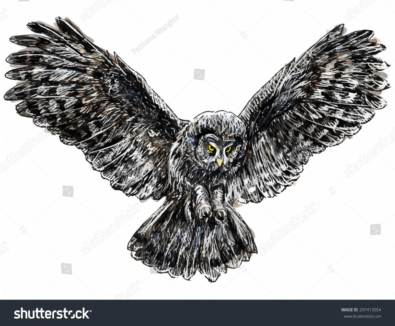 Flying Owl Illustration