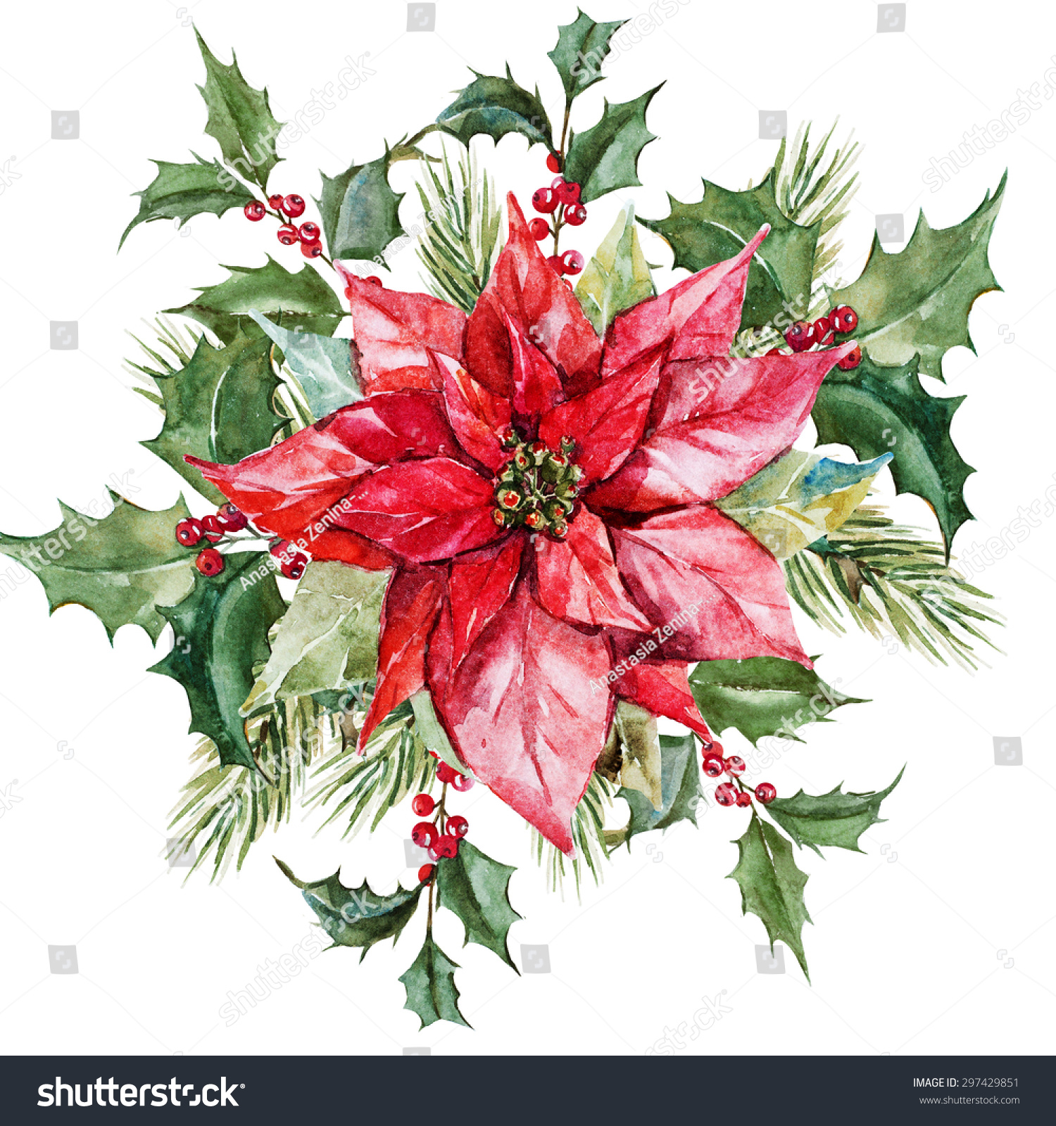 Watercolor christmas composition poinsettia flowers