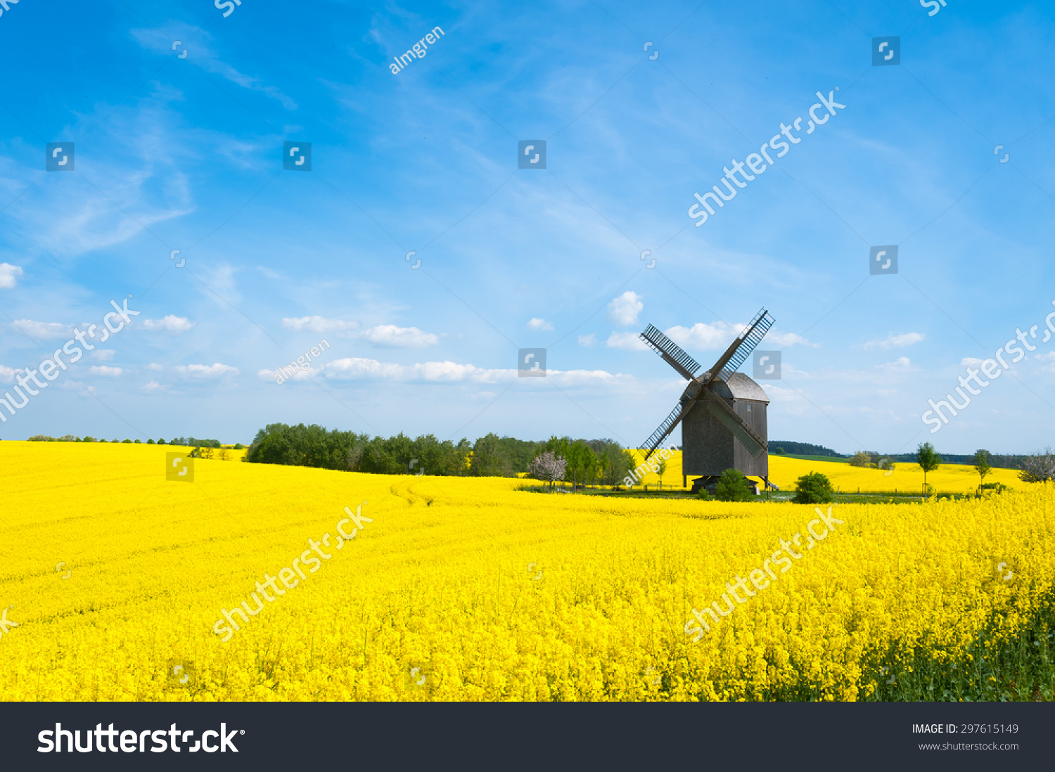 Surrounded By Canoloa Feilds Quotes: Old Windmill Surrounded By Canola Fields In East-Pomerania