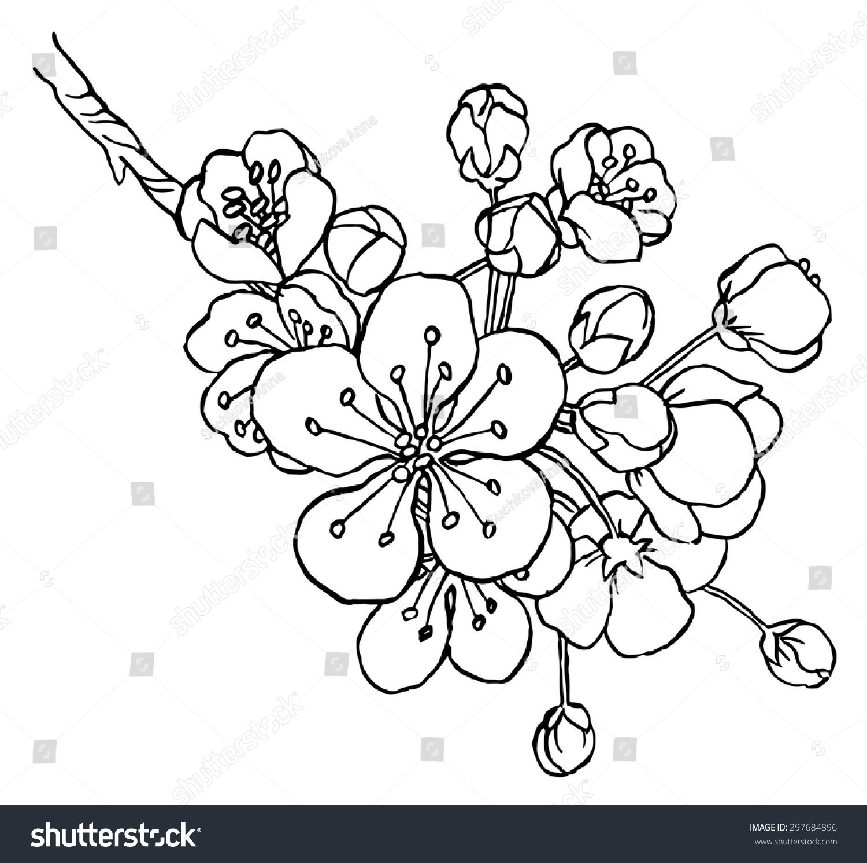 Japanese Flower Line Drawing : Idées sur le thème tatouages de fleurs pommier