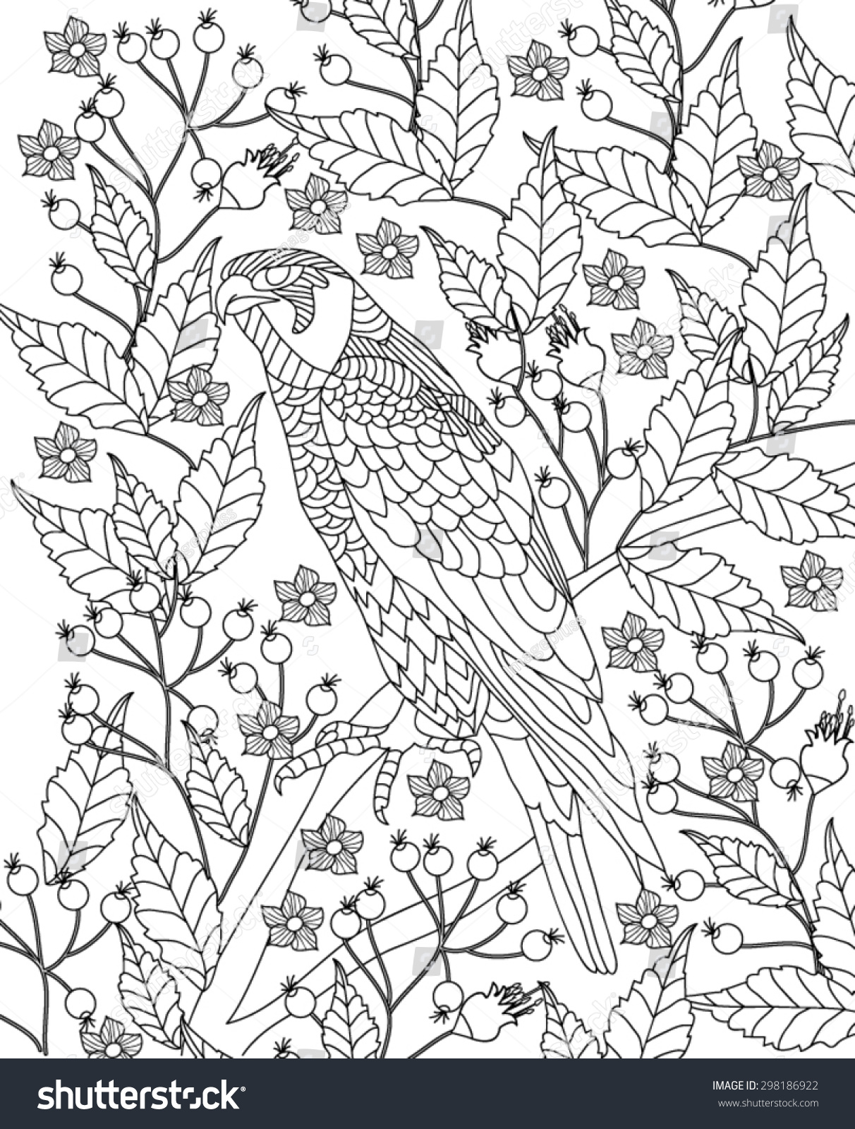 hand drawn bird coloring page stock vector 298186922 shutterstock