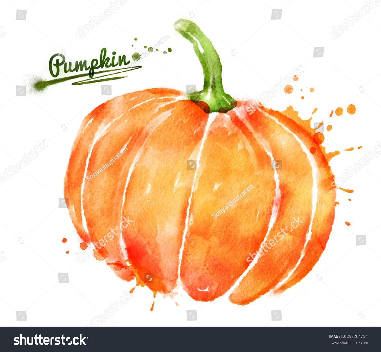 Pumpkin Orange Paint watercolor hand drawn illustration pumpkin paint stock