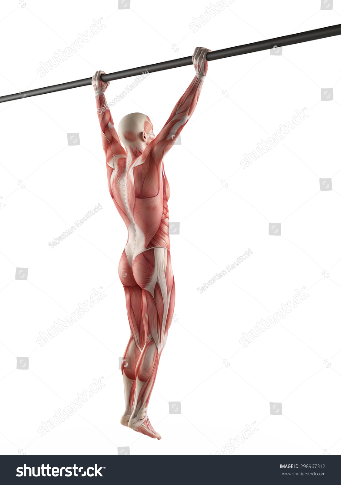 Royalty Free Stock Illustration Of Exercise Illustration Wide Grip