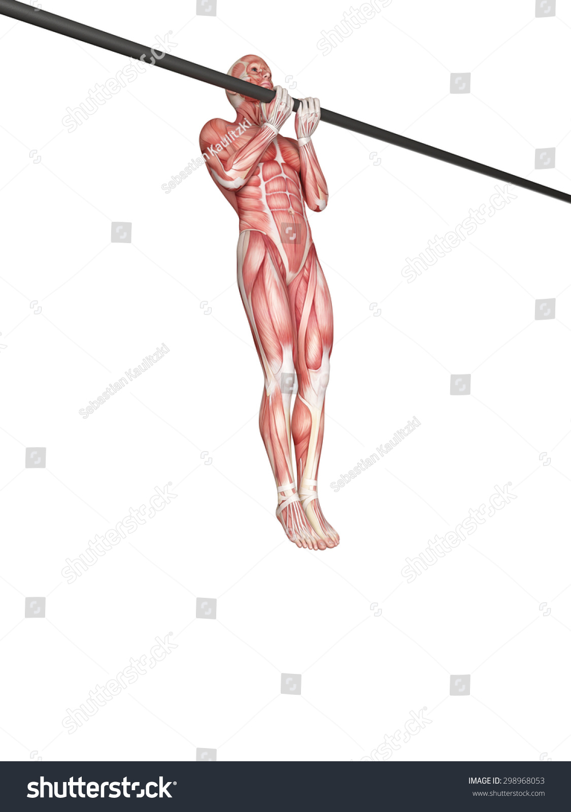 Exercise Illustration Close Grip Chin Stock Illustration 298968053 ...