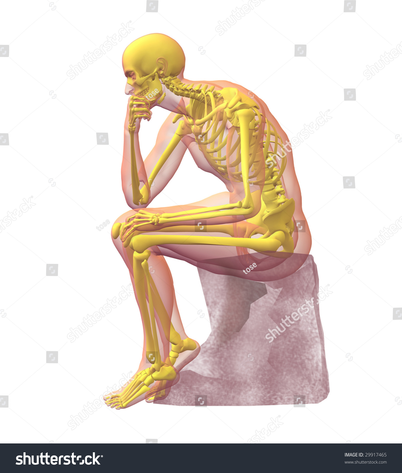 Xray Illustration Male Human Body Skeleton Stock Illustration