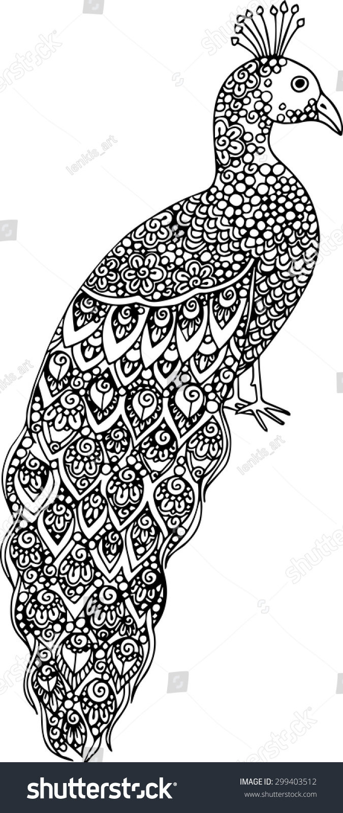 hand drawn doodle peacock illustration decorated stock vector