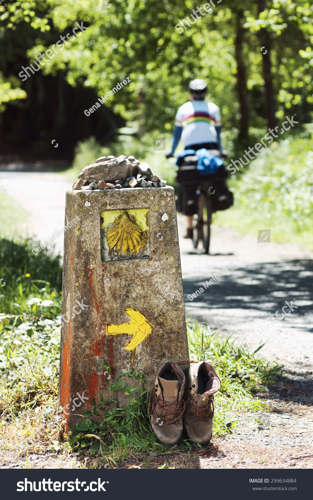 Way St James Shell Yellow Arrow Stock Photo 299634884