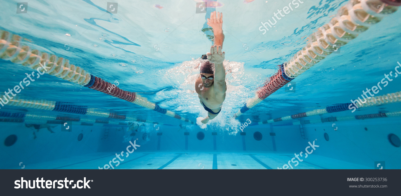professional man swimmer inside swimming pool underwater panoramic image - Inside Swimming Pool