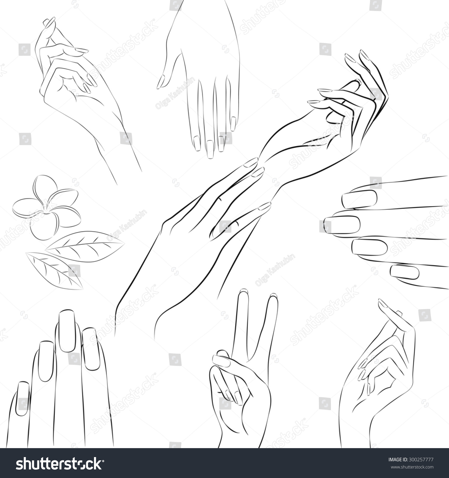 manicure hands collection hand drawn outline stock illustration