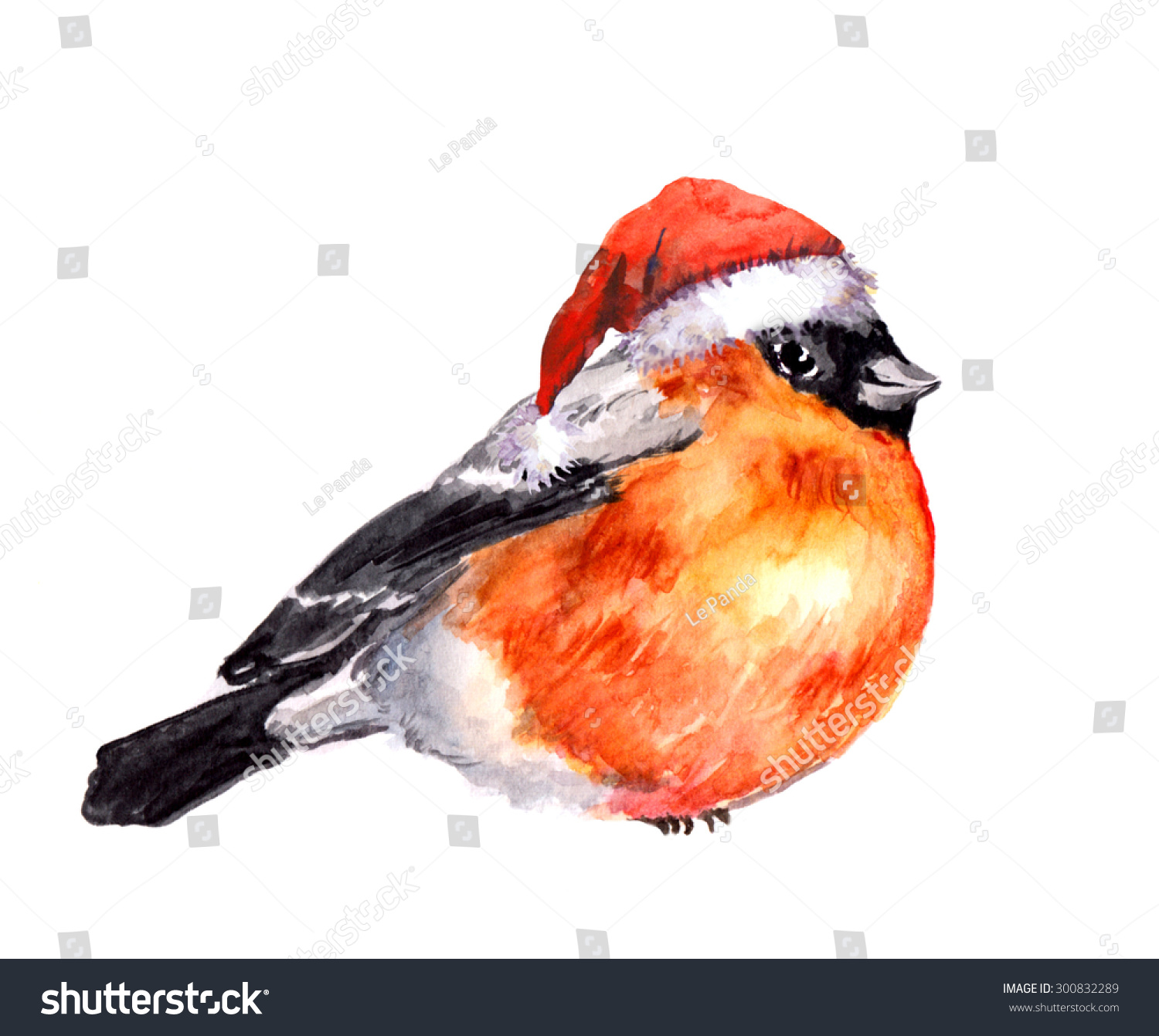 Christmas winter finch bird red santa stock illustration 300832289 christmas winter finch bird in red santa hat watercolor biocorpaavc
