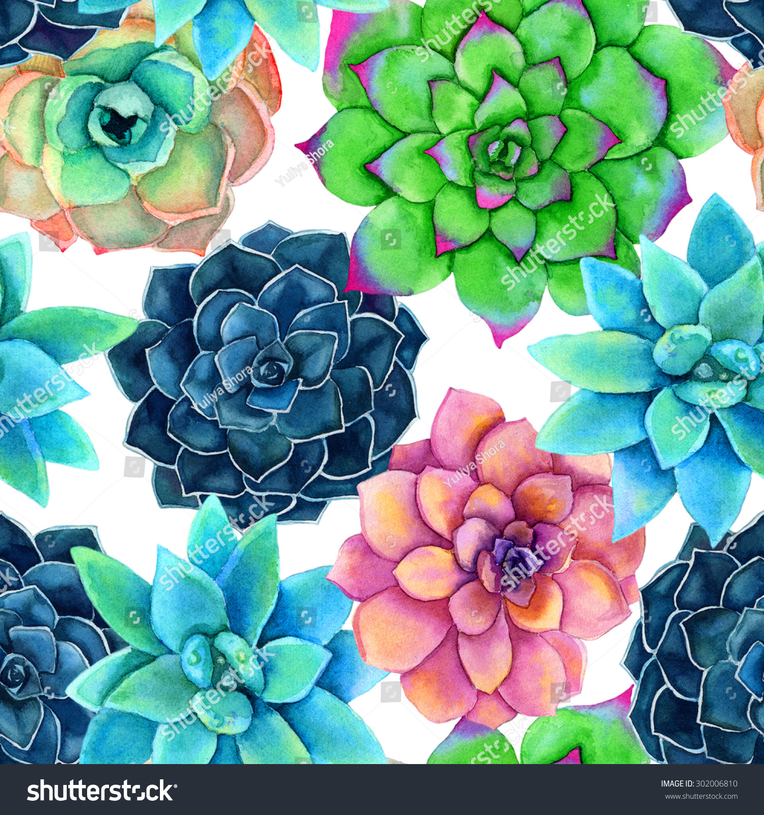 Hand Painted Watercolor Succulent Plants Flowers Stock Photo Edit Now 302006810