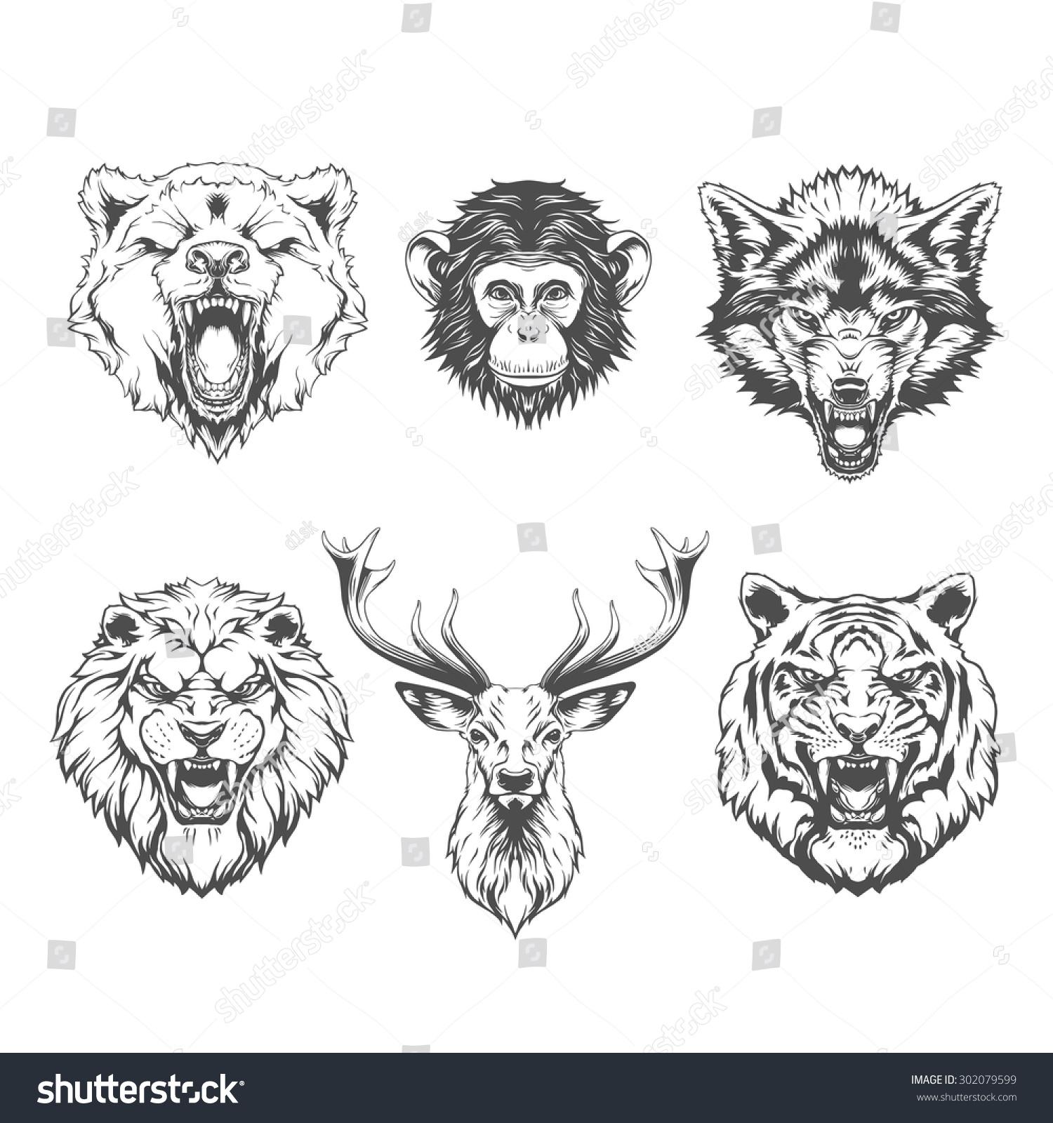 Vector Line Art Animals : Animals heads line art stock vector shutterstock