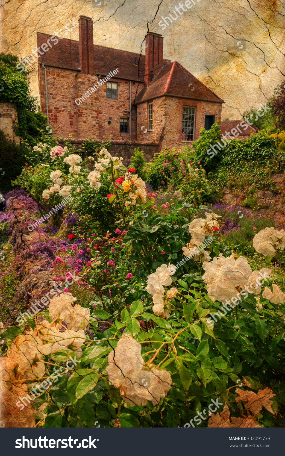 Vintage Textured Picture Roses English Cottage Stock Photo (Royalty ...