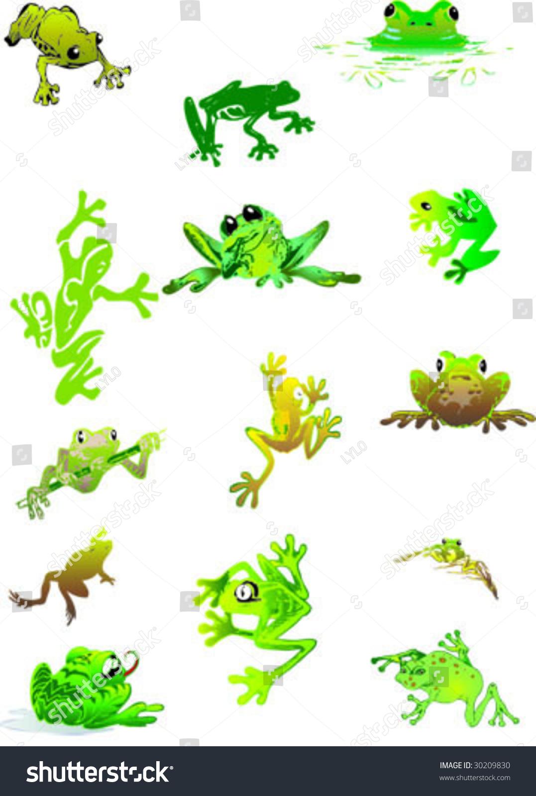 lovely frogs stock vector 30209830 shutterstock