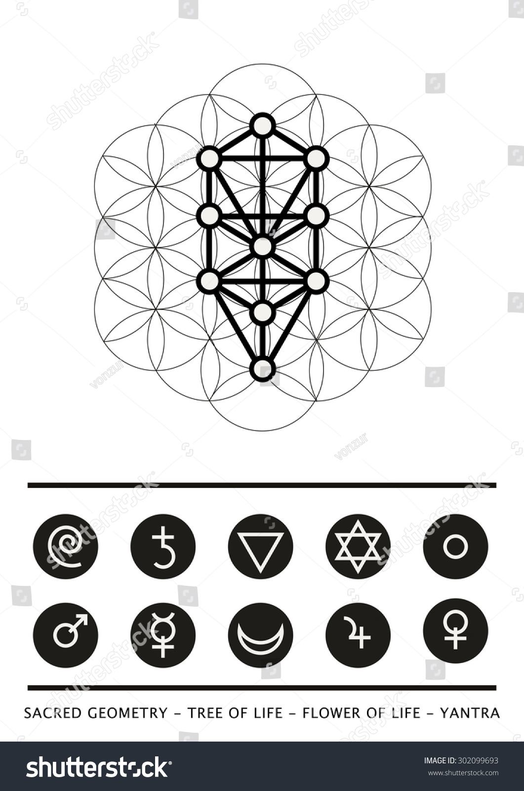 Sacred geometry tree life flower life stock vector 302099693 sacred geometry tree of life flower of life yantra stock vector ccuart Images