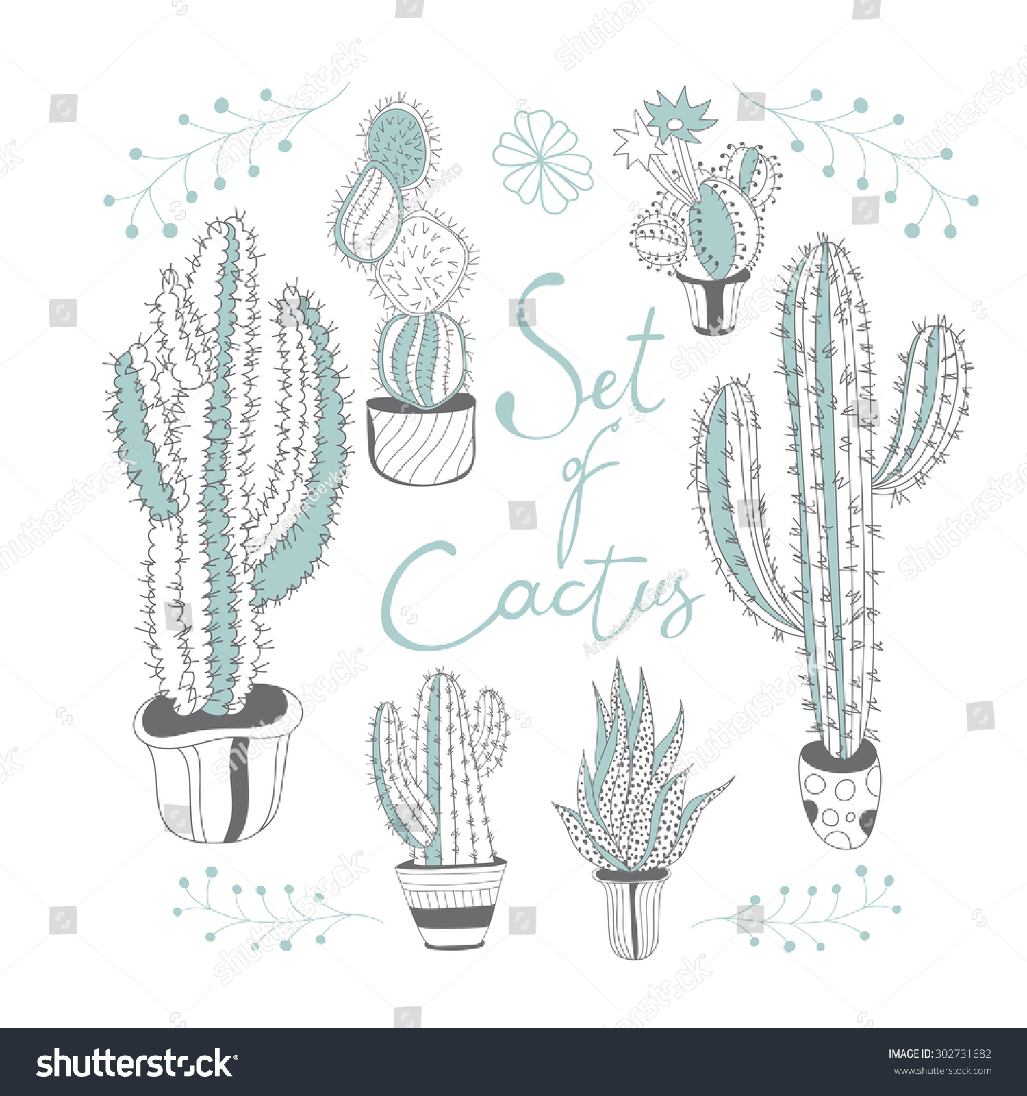 Line Drawing Cactus : Set cactus cacti line drawing stock vector