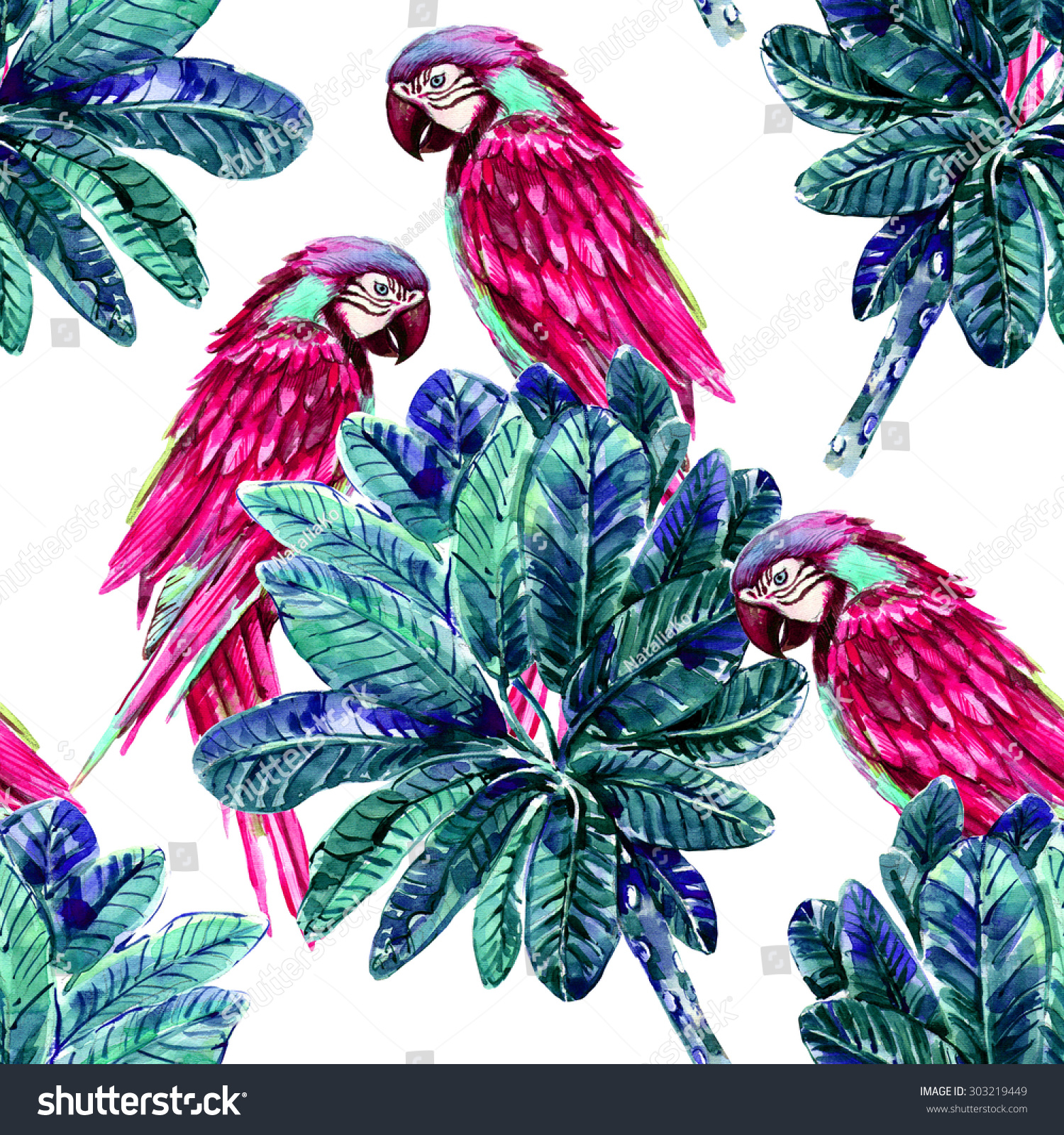 Dhak Tree Information Stock Photo Watercolor Parrots And Tropical Jungle Leaves