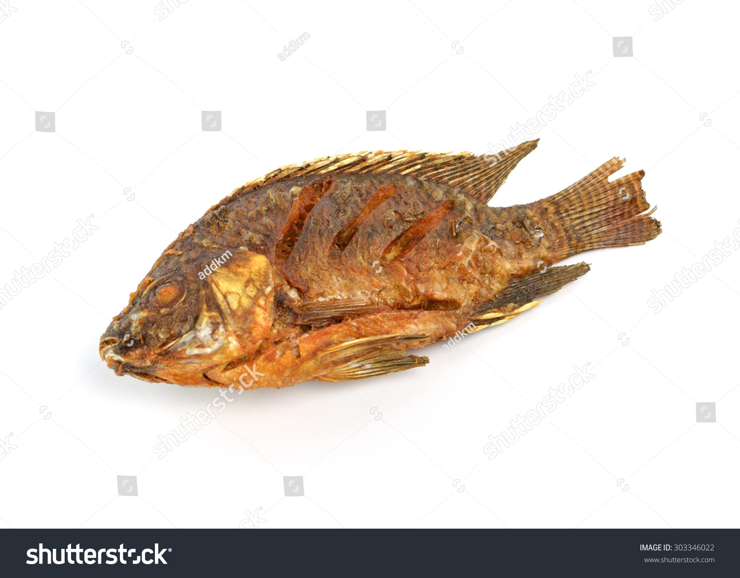 Fried tilapia fish fried isolated on white background for Fried tilapia fish
