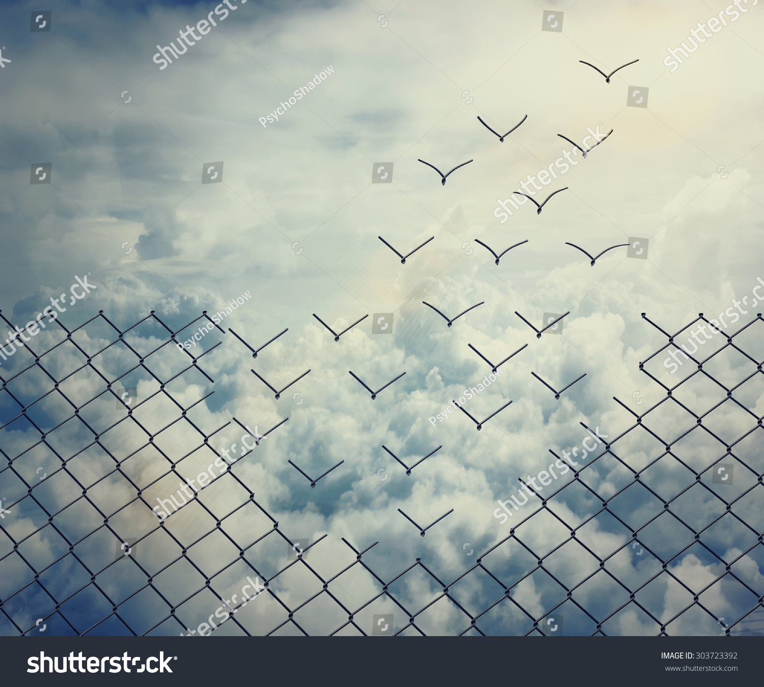 Stock Photo Metallic Wire Mesh Transform Into Flying Birds Over The Sk...