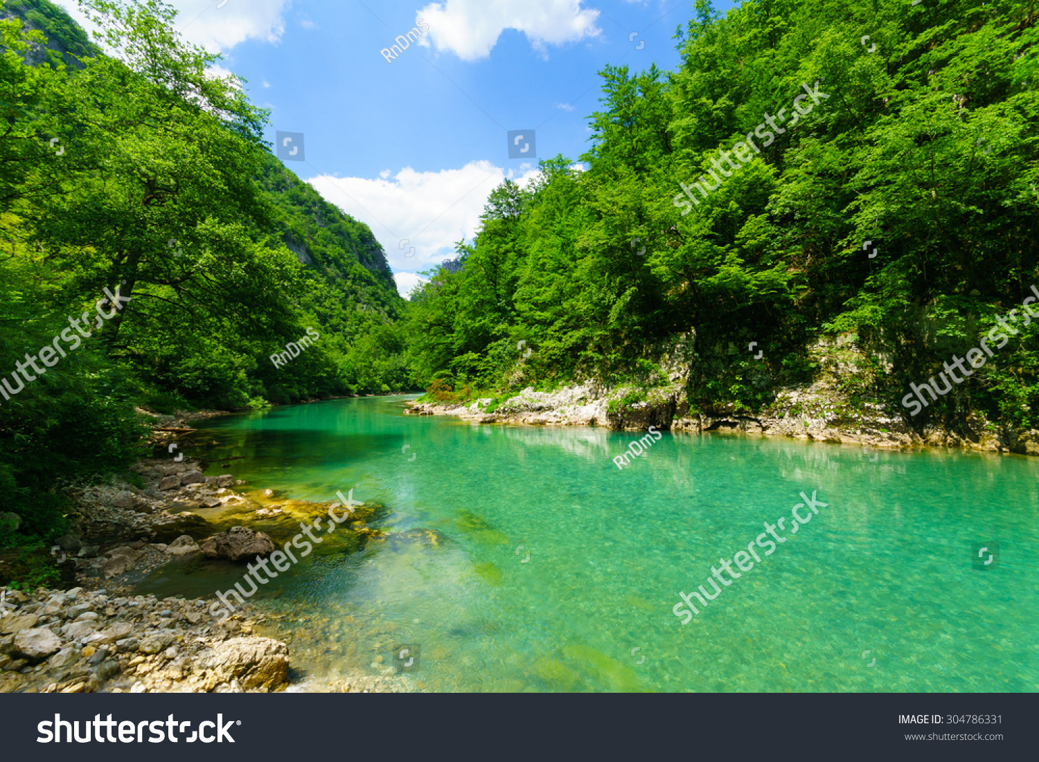 ... And Canyon, Northern Montenegro Stock Photo 304786331 : Shutterstock: www.shutterstock.com/pic-304786331/stock-photo-the-tara-river-and...
