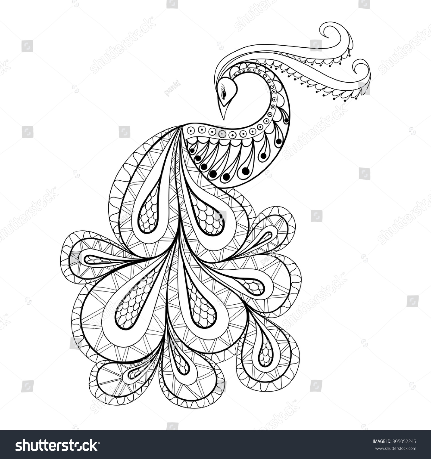 hand drawn peacock anti stress coloring stock vector 305052245