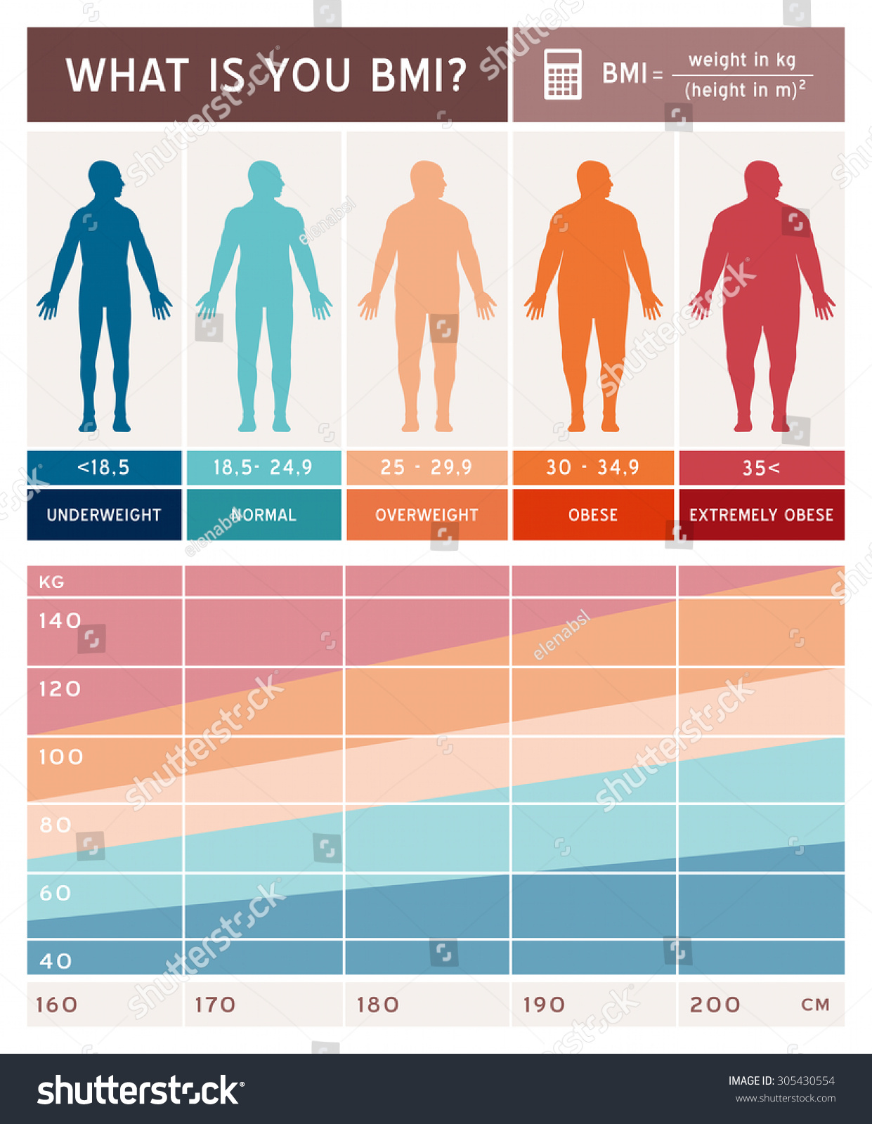 body mass index infographics body shapes stock vector 305430554