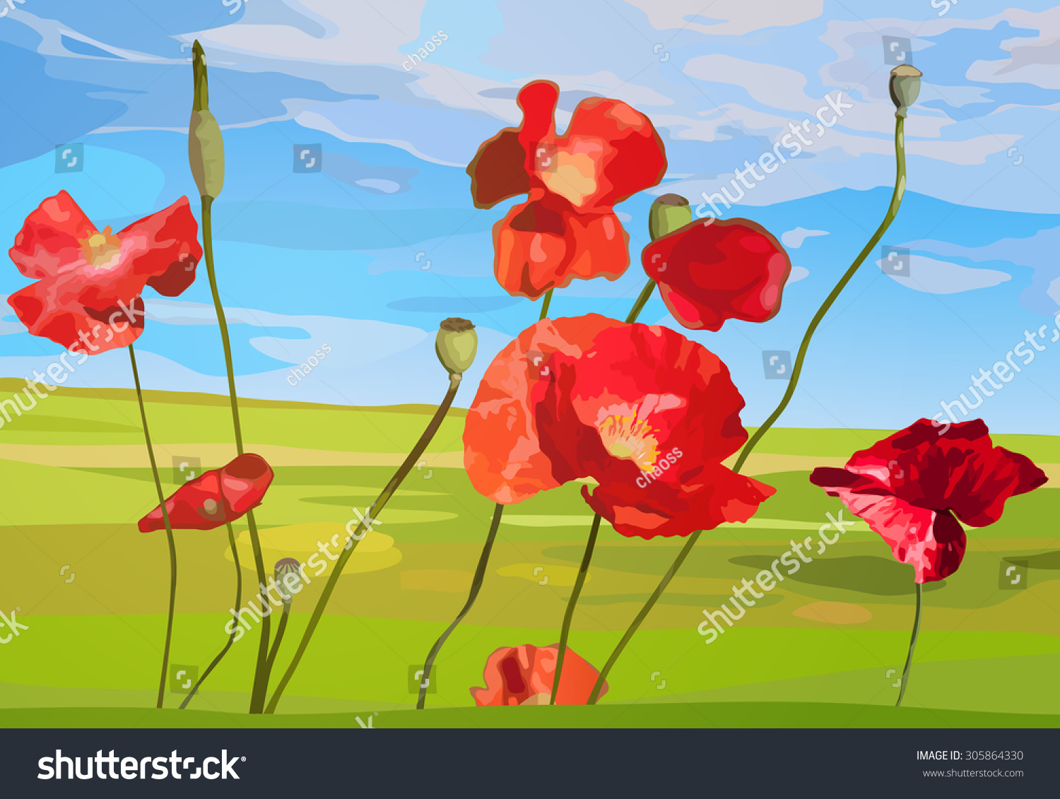 Poppy Red Flowers On Field Background Stock Vector 305864330