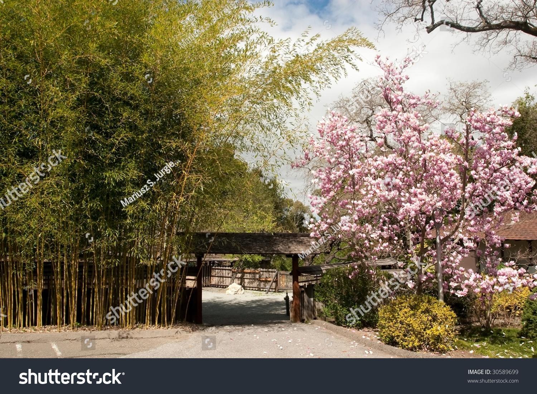 Hakone Gardens Traditional Japanese Garden Saratoga Stock Photo ...