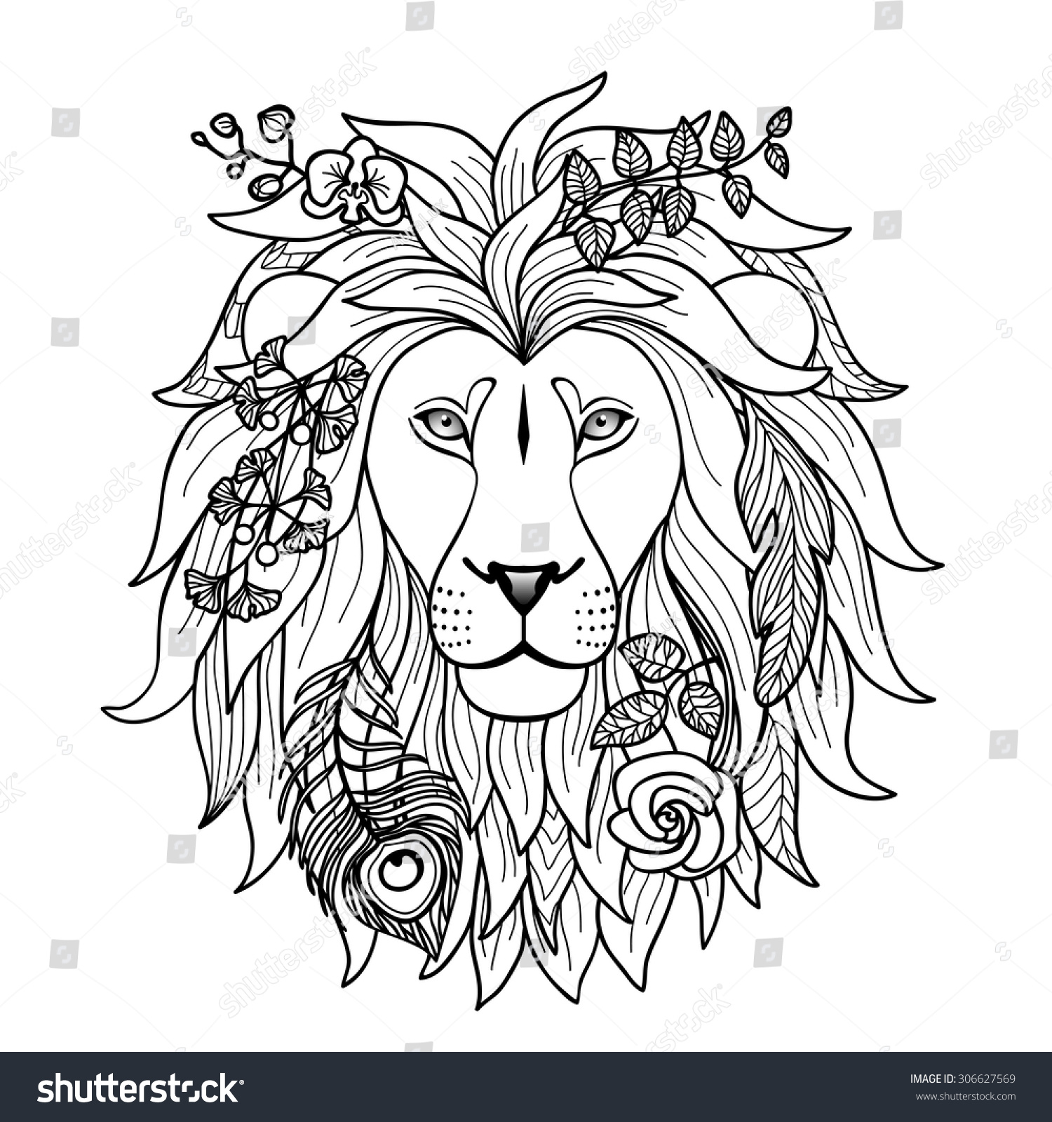 Lion Graphic Designs