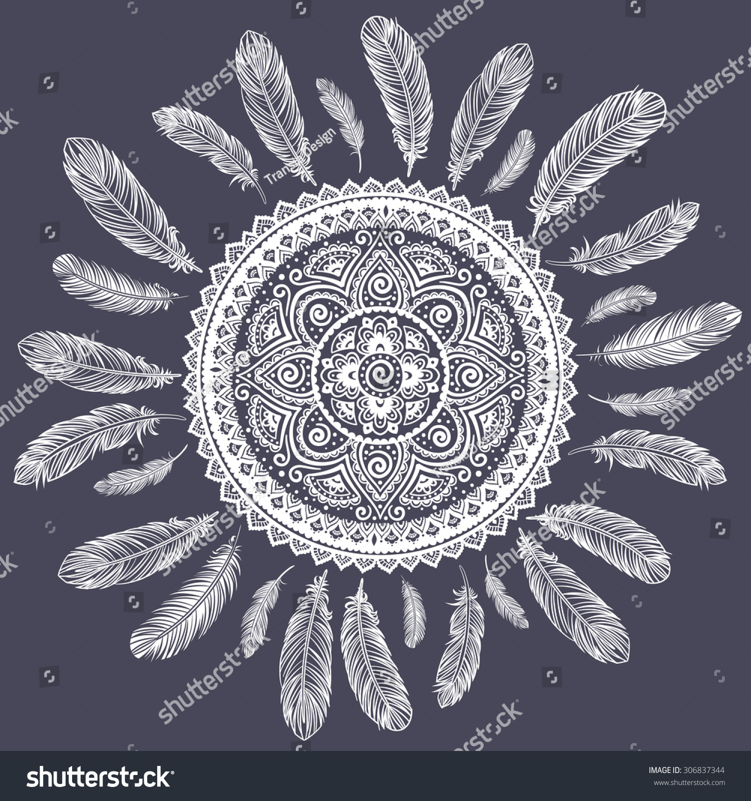 Ethnic American Indian Dream Catcher Can Stock Vector 306837344