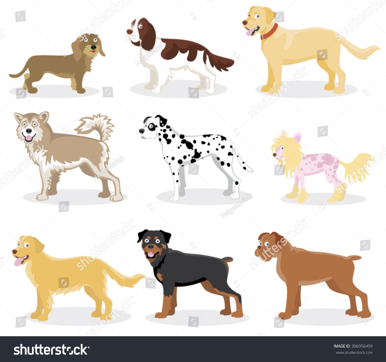 funny cartoon dog various breeds standing stock vector 306956459 shutterstock. Black Bedroom Furniture Sets. Home Design Ideas