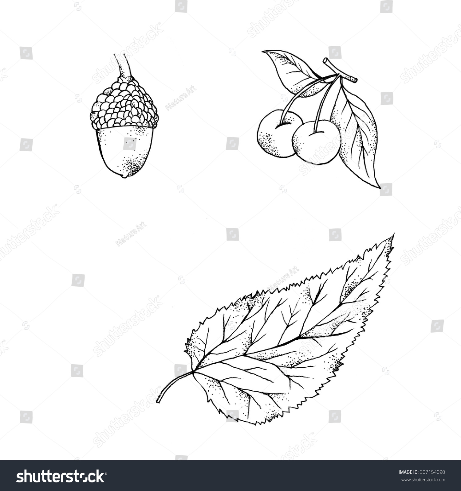 autumn theme black white illustrations fall stock illustration
