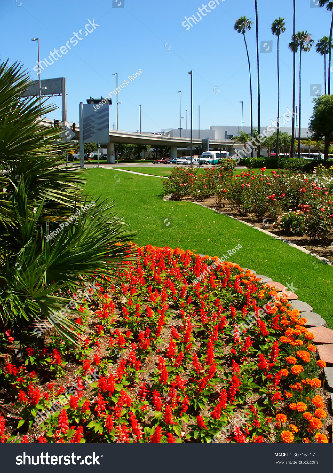 LOS ANGELES, USA   JUNE 27, 2005: Flower Gardens And Palm Trees Create