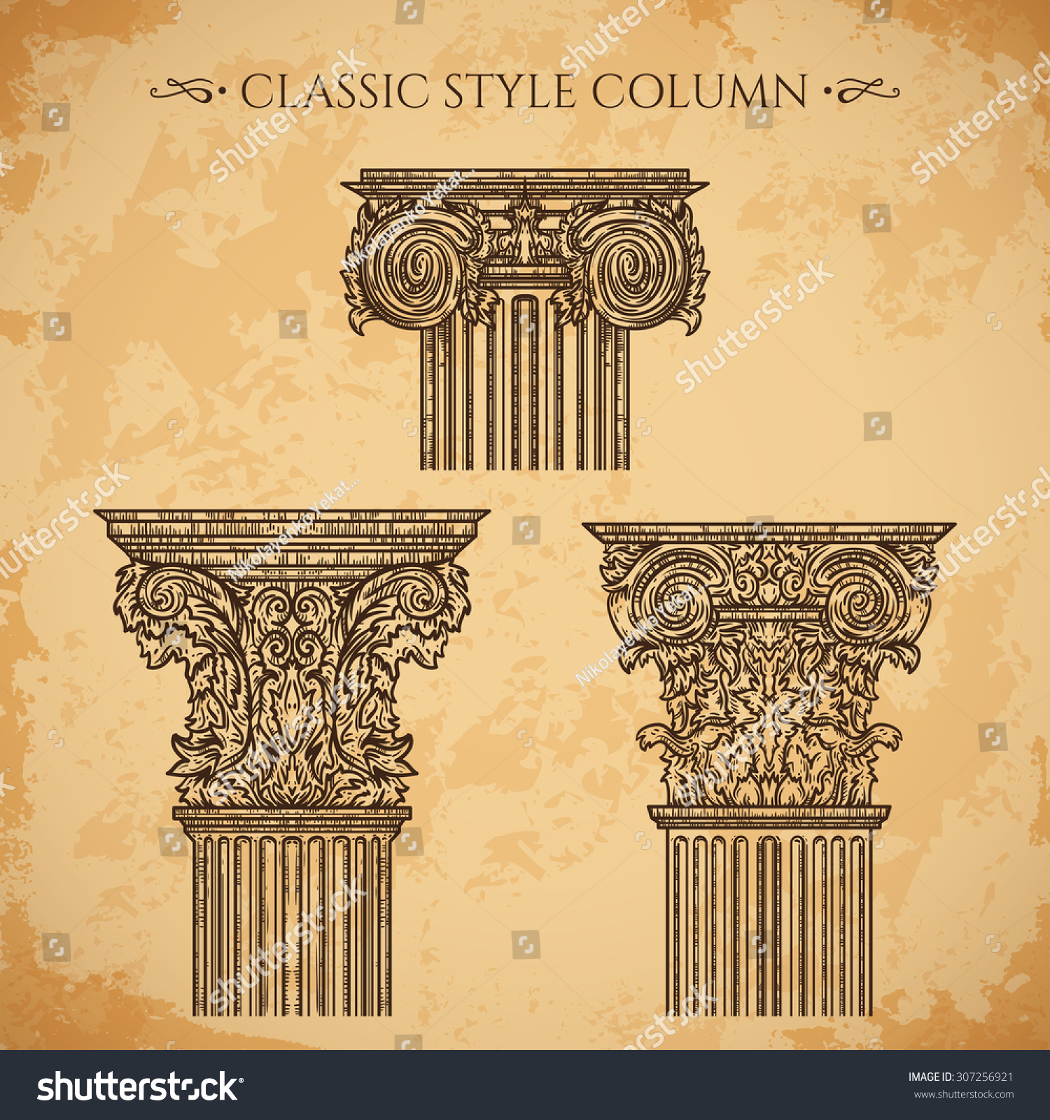 Antique baroque classic style column vector stock vector for Baroque architecture elements