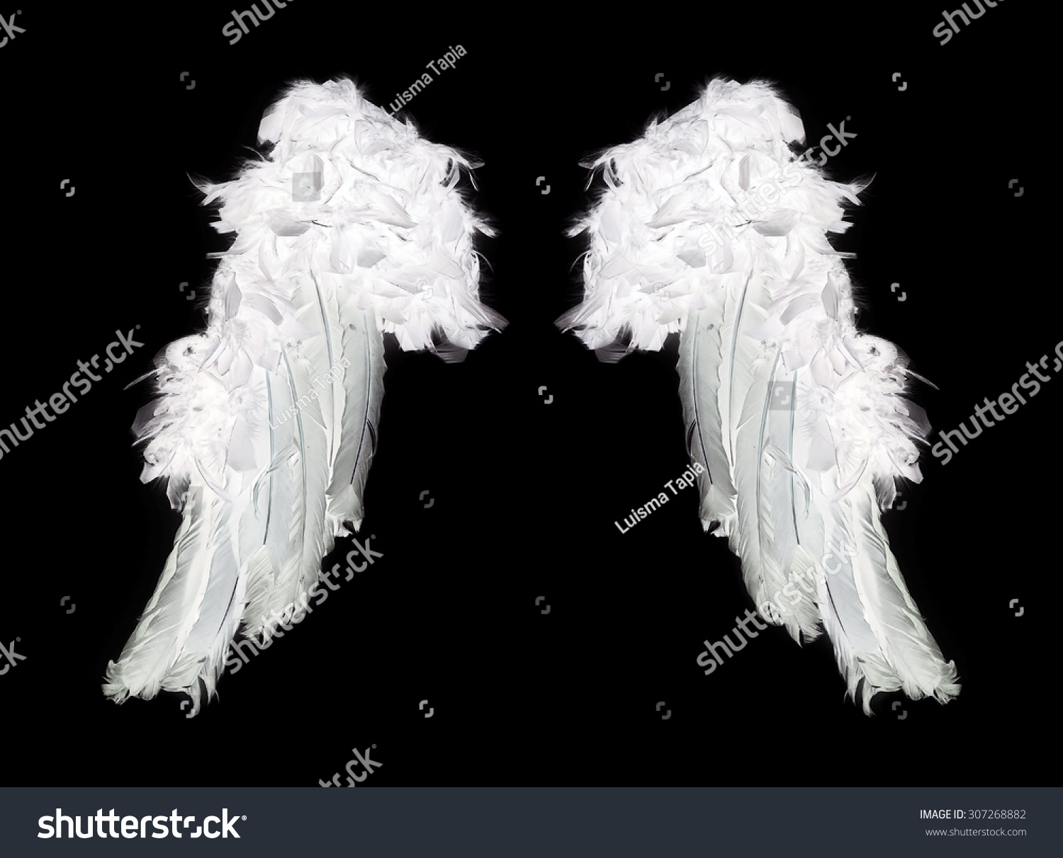 White Angel Wings On Black Background Stock Photo ...
