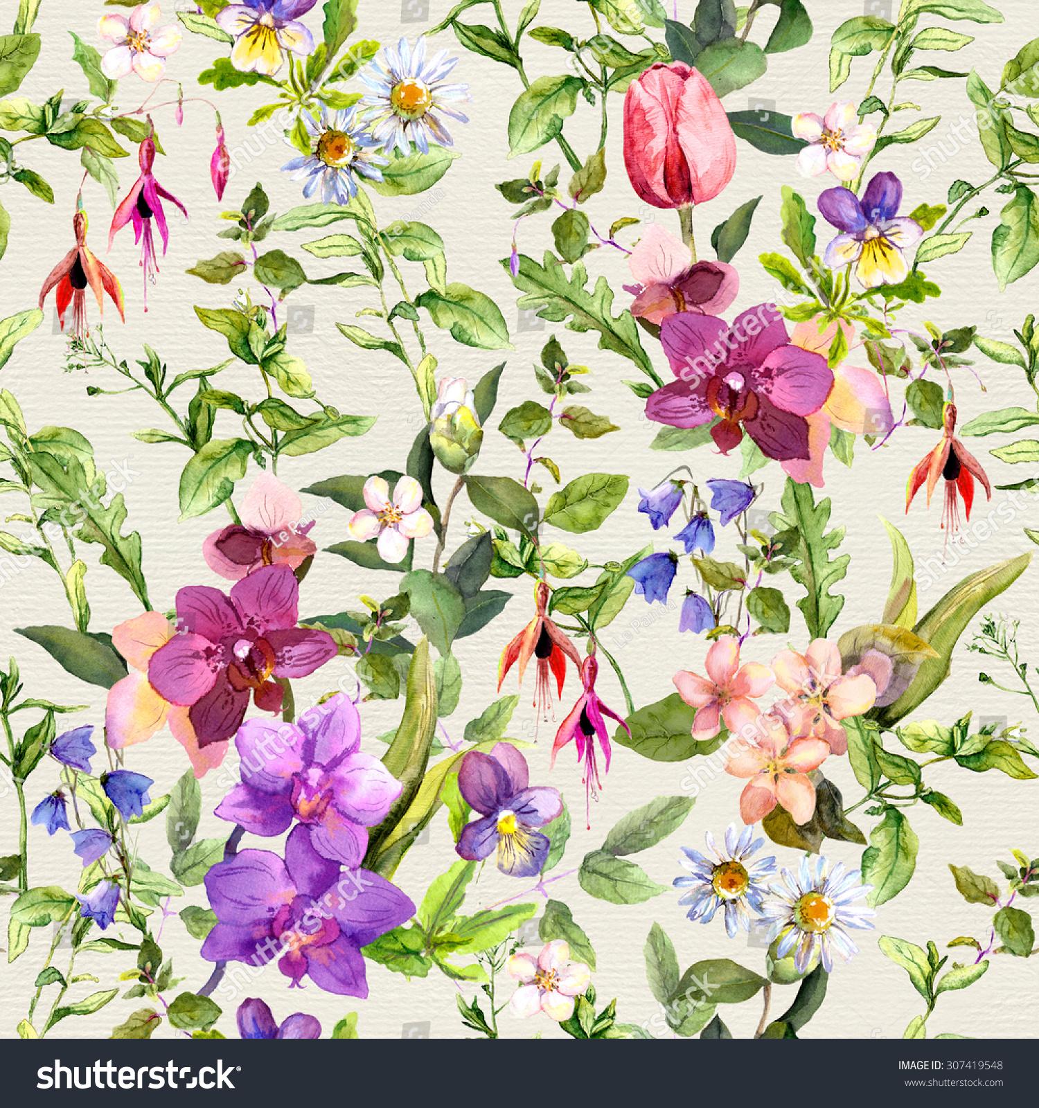 Flowers And Butterflies. Meadow