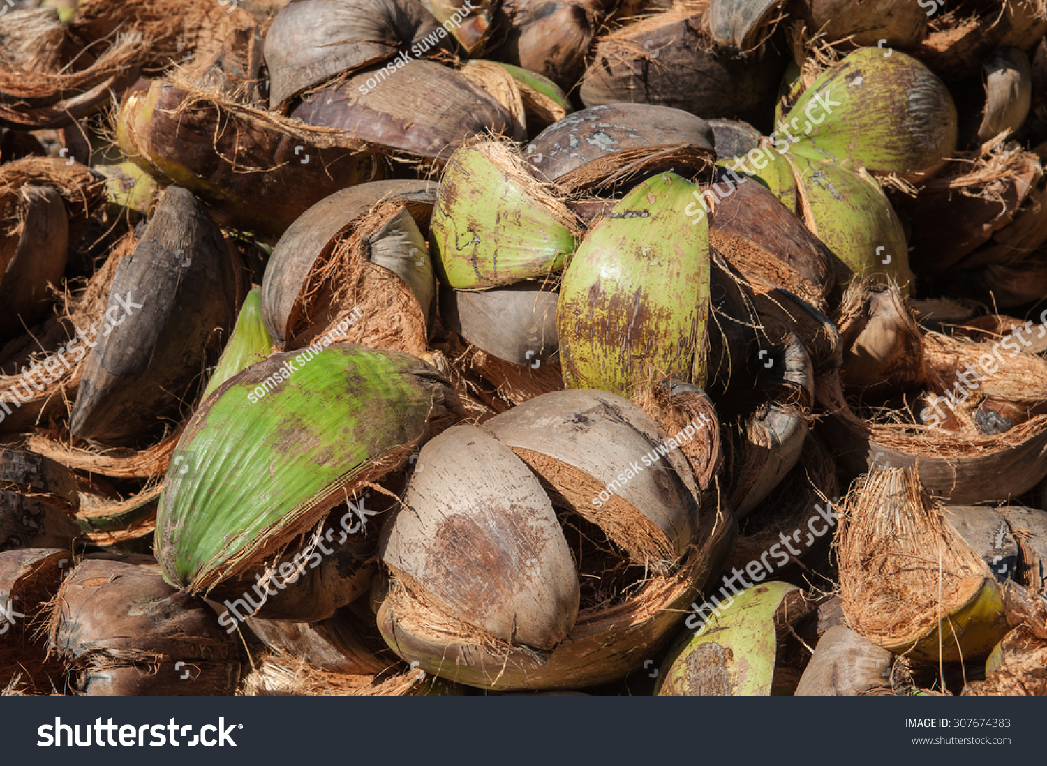 how to get to the husk of a coconut