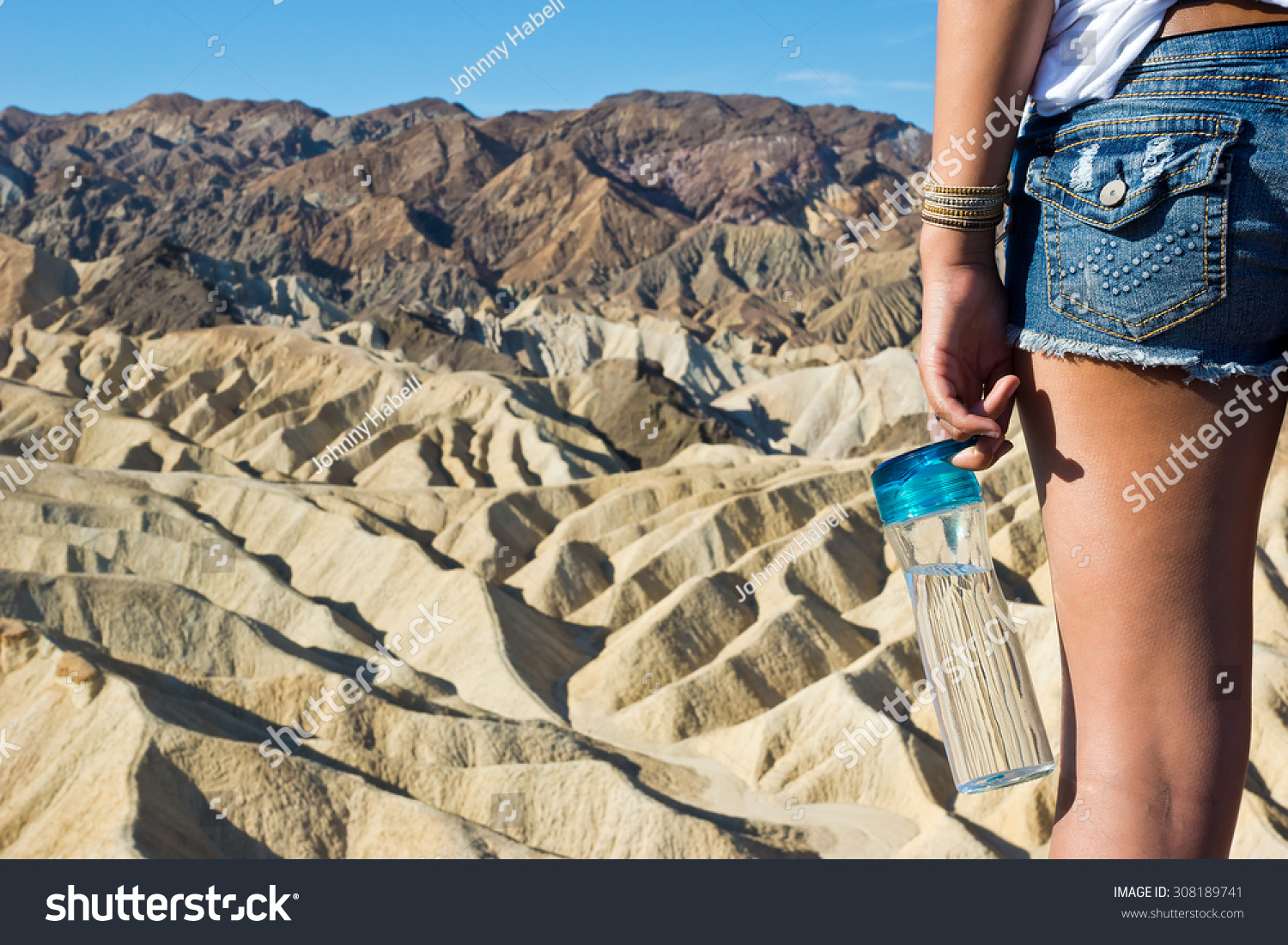 Water Bottle And The Desert Stock Photo 308189741 ...