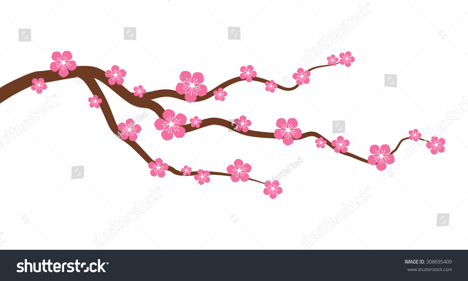 Peach Cherry Blossom Tree Branch Flowers Stock Vector ...