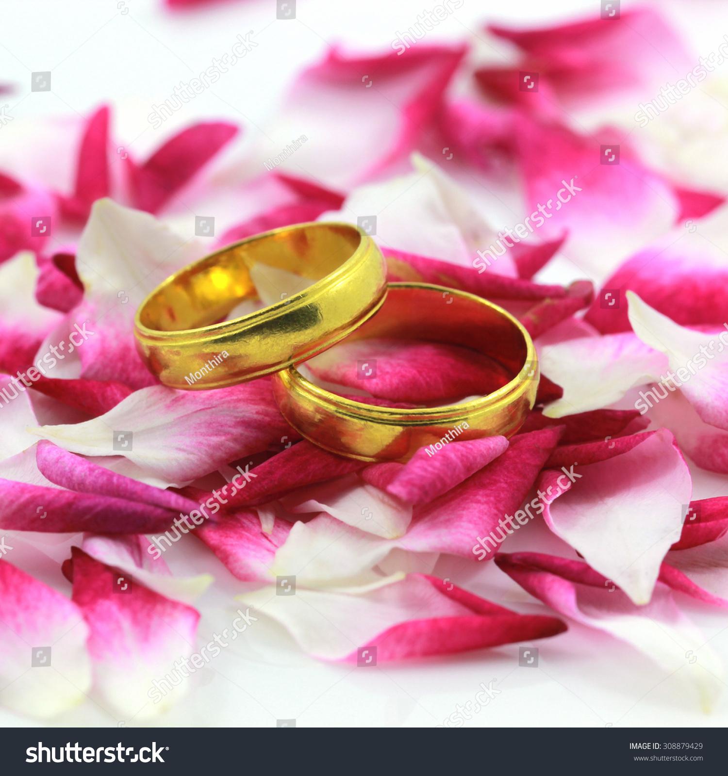 Two Splendid Wedding Rings Stock Photo (Edit Now) 308879429 ...