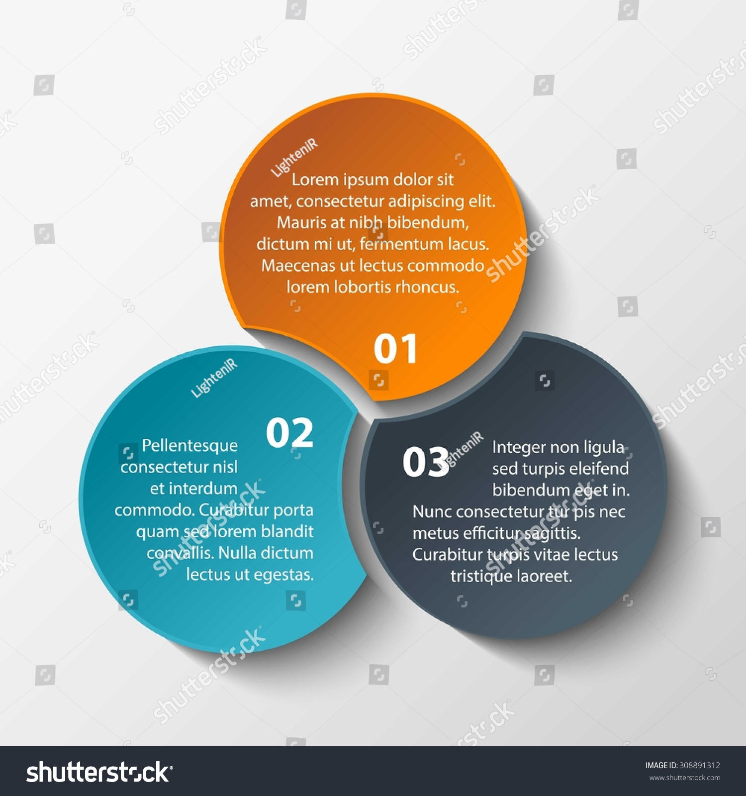 Triple Intersect Infographic Circle Infographic Diagram Stock Vector ...